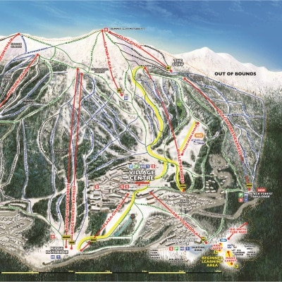 It is the map for skiing at Big White, the colours represent the level of difficulty to travel.